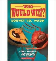 hornet v wasp